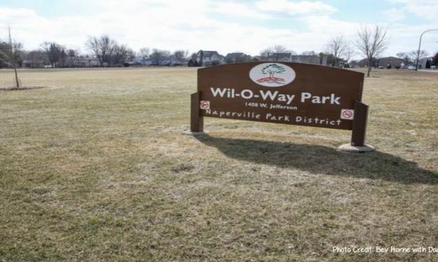 Nine Naperville parks will get a natural facelift