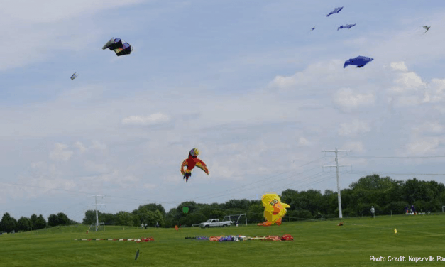 Let's go fly a kite, up to the highest height over Frontier Park to celebrate summer's start